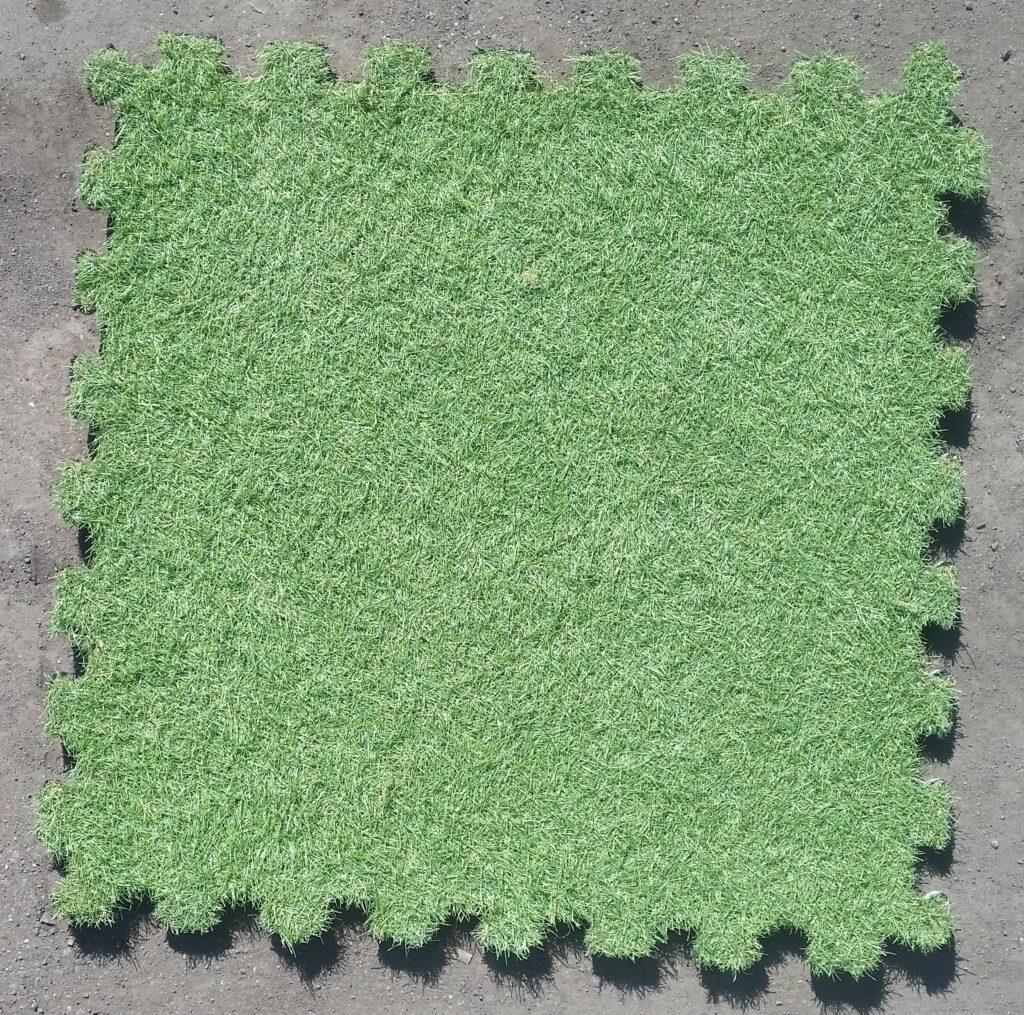 Sztuczny trawnik z pianki, Kunstrasen-Platten